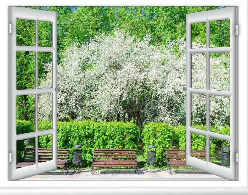 Download 看法窗口开花的树 库存图片. 图片 包括有 背包, 公园, 植物群, 樱桃, beauvoir, 室外, 春天 - 72359609