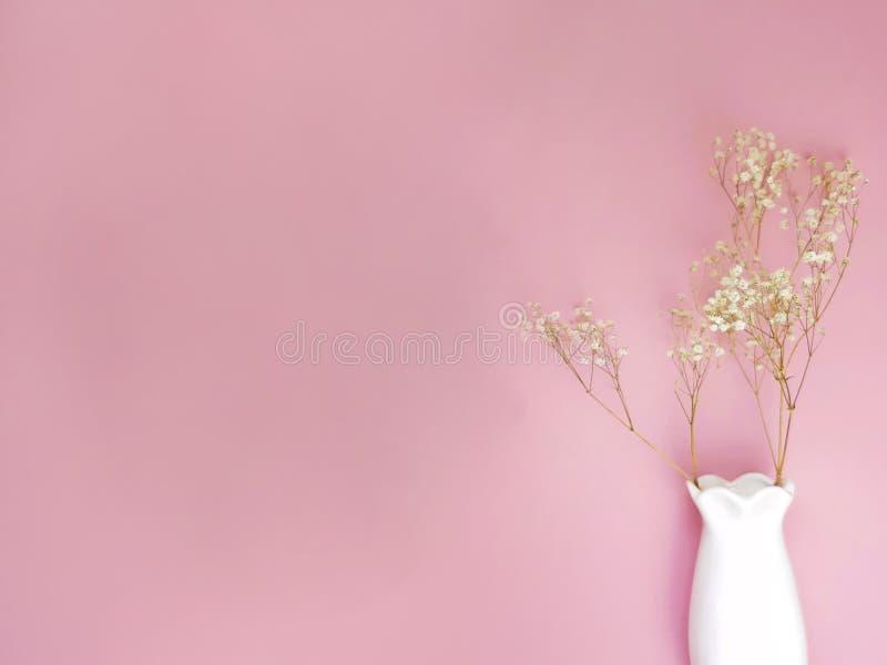 看法花的嘲笑在桃红色墙壁上的陶瓷花瓶 库存照片