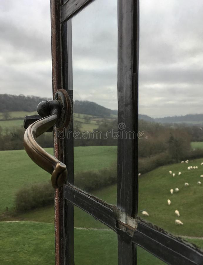 看法通过吃草在绿色牧场地的绵羊开窗口  免版税图库摄影