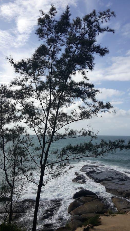 看法-婆罗洲的一角 免版税图库摄影