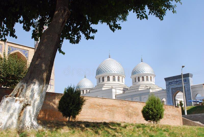 看法Dzhuma清真寺在塔什干 库存照片