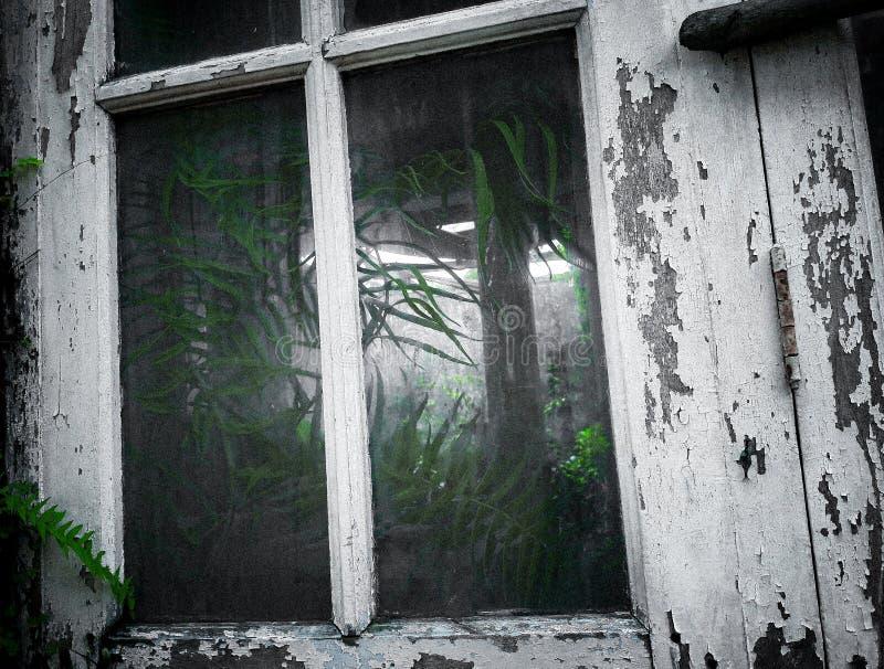 看深对一家被放弃的工厂 免版税库存照片