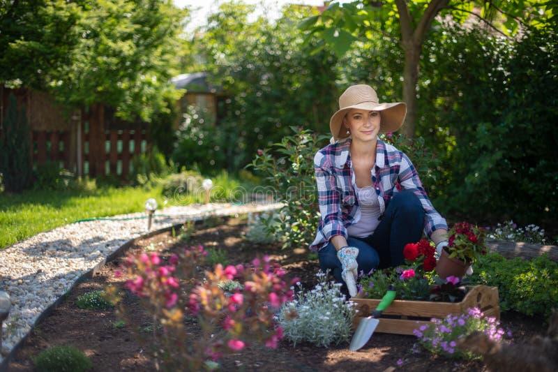 看照相机的美丽的女性花匠微笑和拿着木板箱有很多花 免版税库存图片