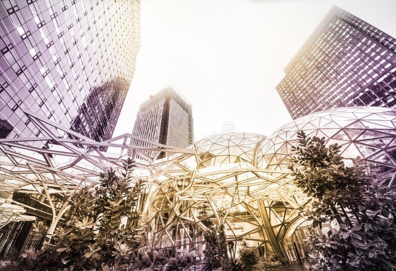 看西雅图摩天大楼日落,颜色定调子申请了 库存照片