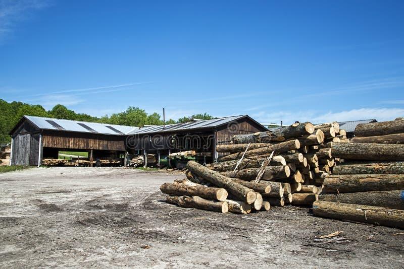 看见了日志,树,锯木厂,木材 免版税图库摄影