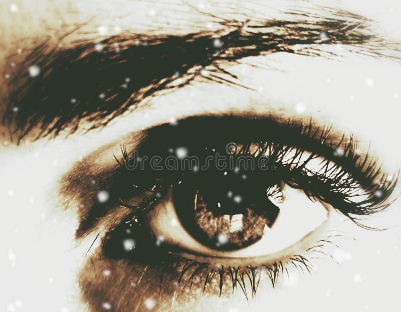 看见从您的眼睛的奇迹 库存照片