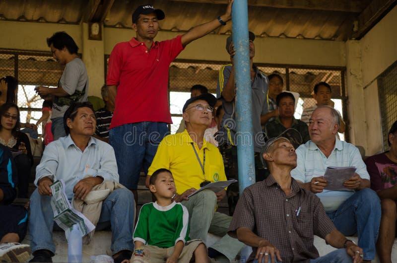 看赛马的人,清迈,泰国 图库摄影