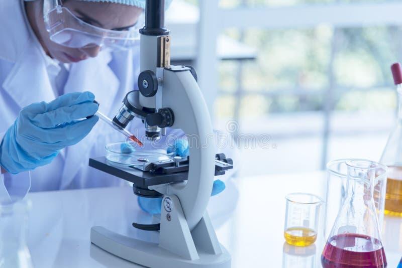 看通过一个显微镜的年轻科学家在实验室 做一些研究的年轻科学家 确信的scie的画象妇女 库存照片