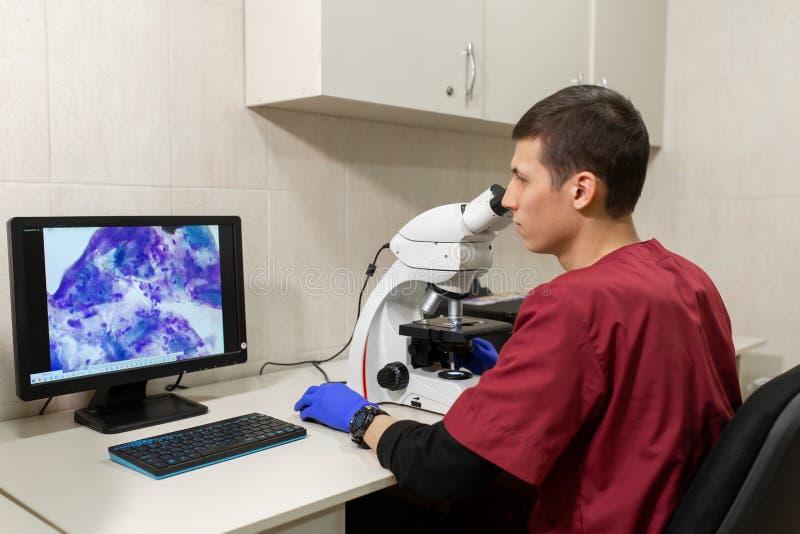 看通过一个显微镜的年轻科学家在实验室 做一些研究的年轻科学家 免版税库存照片