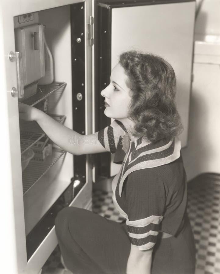 看通过冰箱的妇女侧视图 库存照片