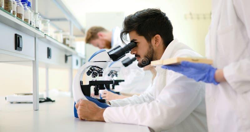 看通过显微镜的年轻科学家在实验室 免版税图库摄影