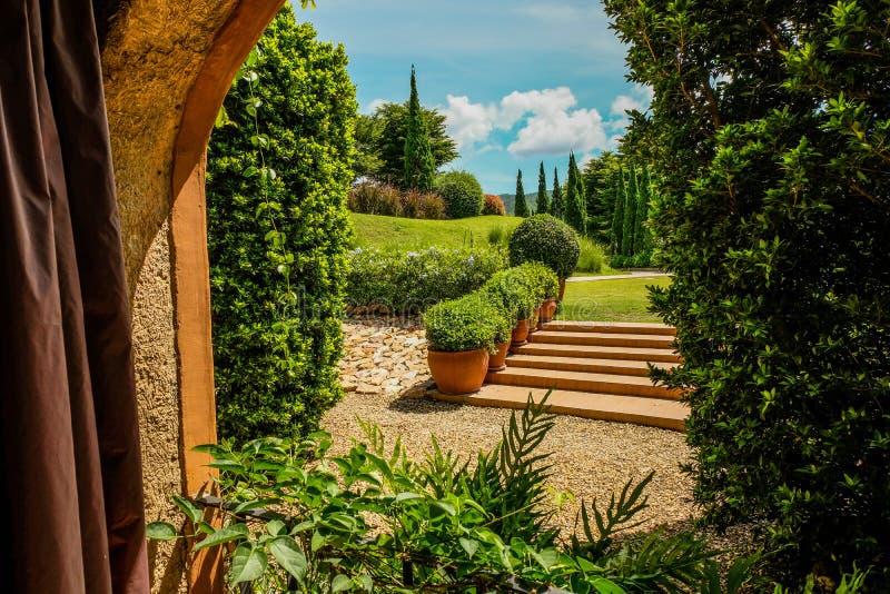 看通过窗口的绿色庭院 免版税图库摄影