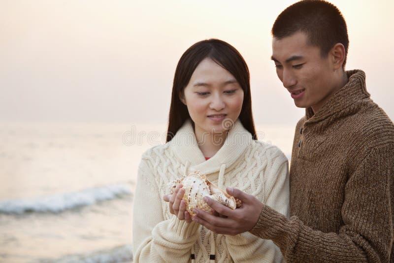 看贝壳的年轻夫妇 免版税图库摄影