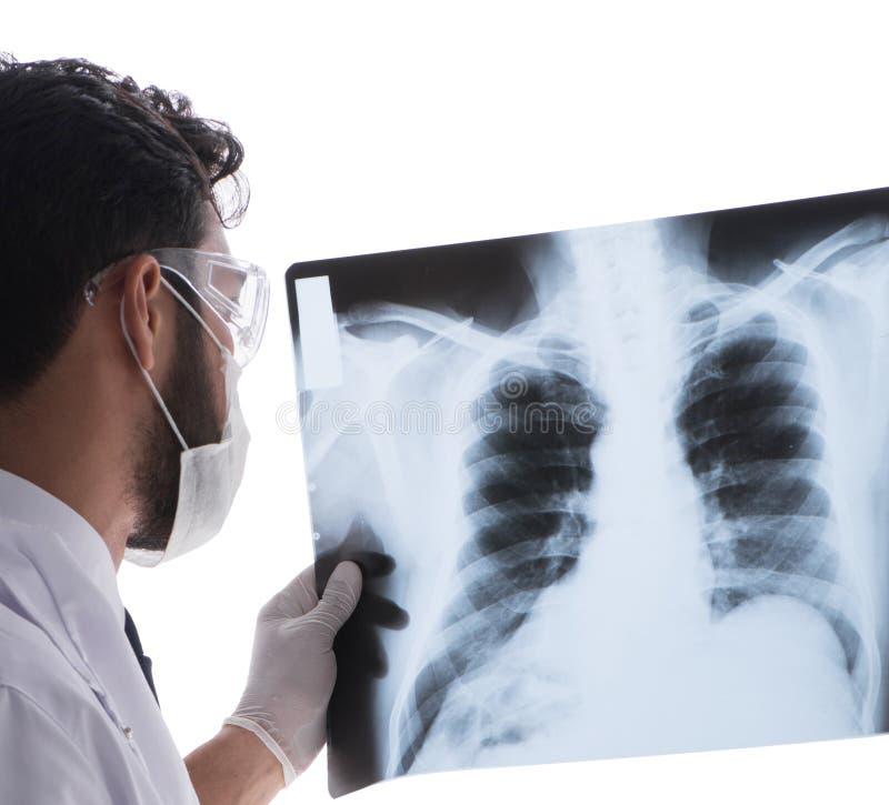 看X-射线图象的年轻医生隔绝在白色 免版税库存图片
