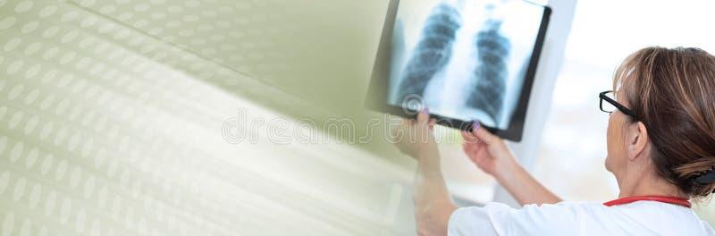 看X-射线的女性医生;全景横幅 免版税库存照片