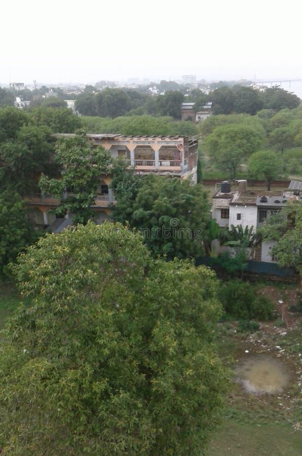 真正的自然的照片印度 免版税图库摄影