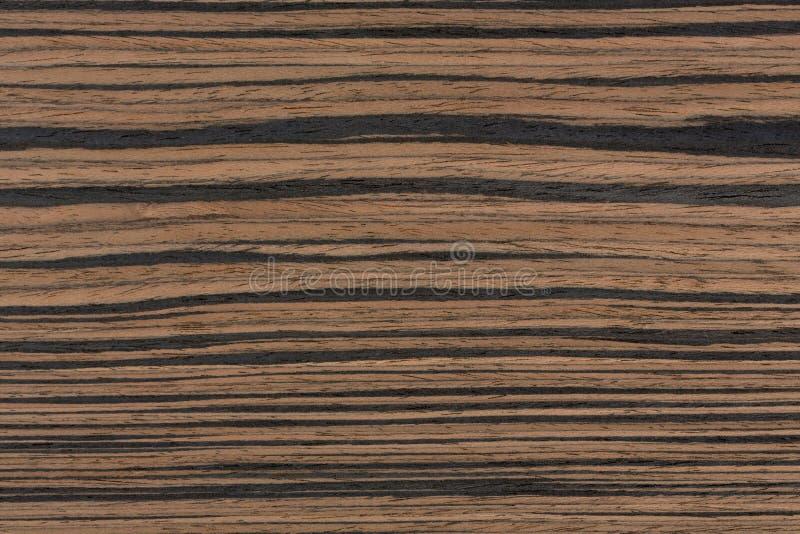 真正的高冲击自然感觉的乌木木纹理 库存照片