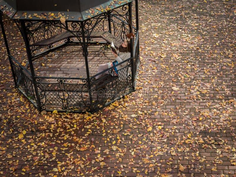 眺望台在秋天公园 库存图片