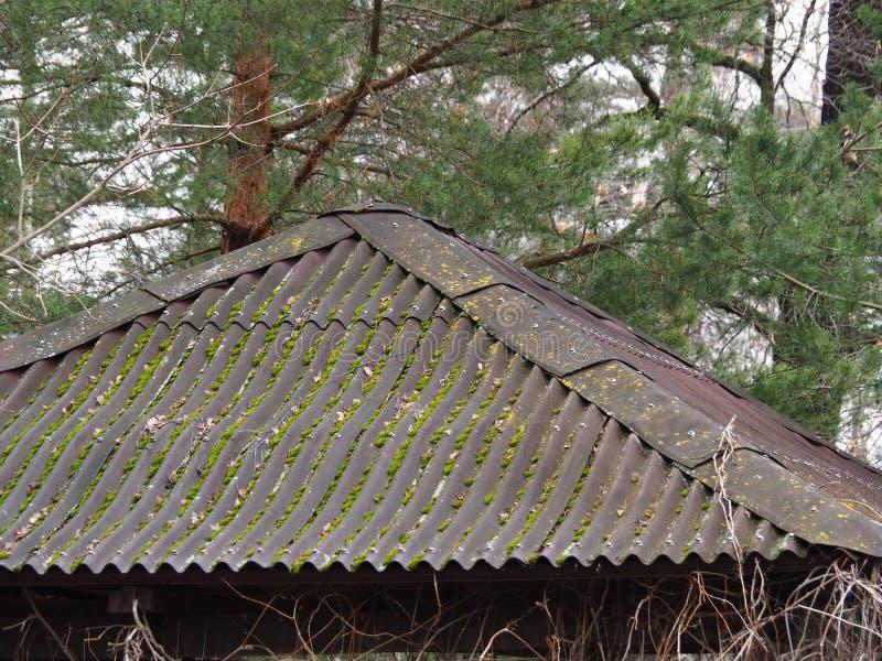 眺望台Onduline屋顶系统在森林 库存照片