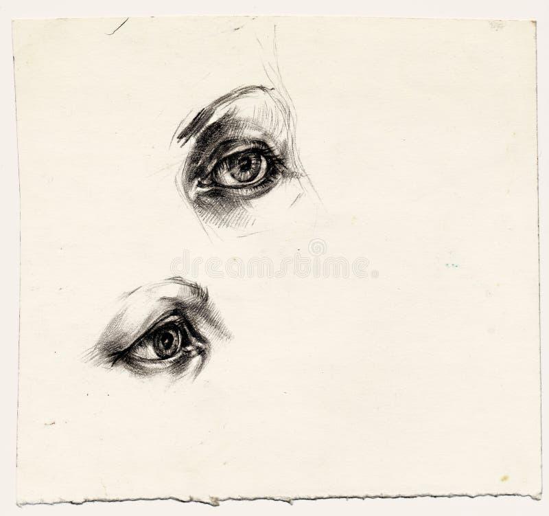 眼睛二 向量例证