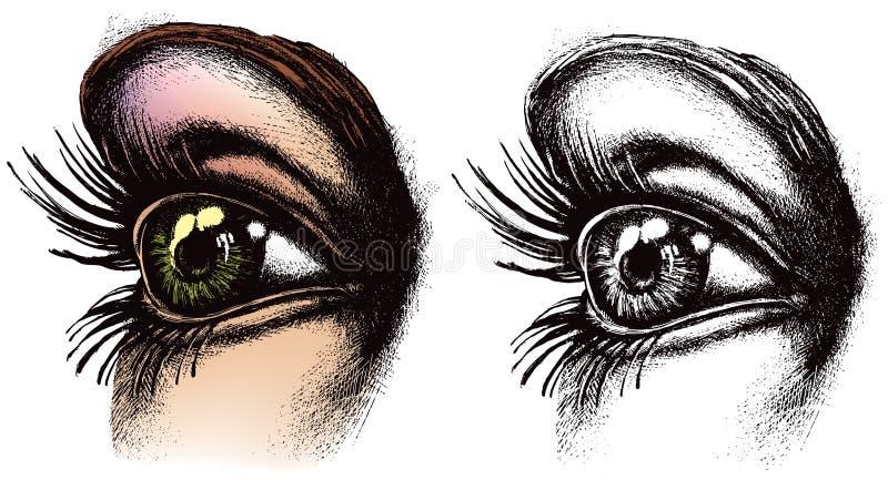 眼睛例证 库存照片