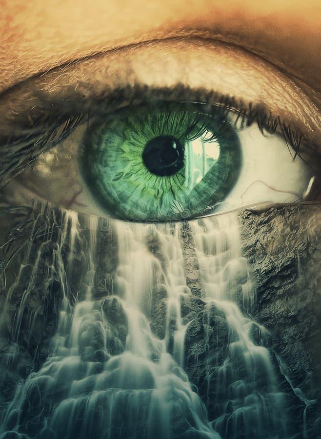 眼睛和瀑布 免版税库存照片
