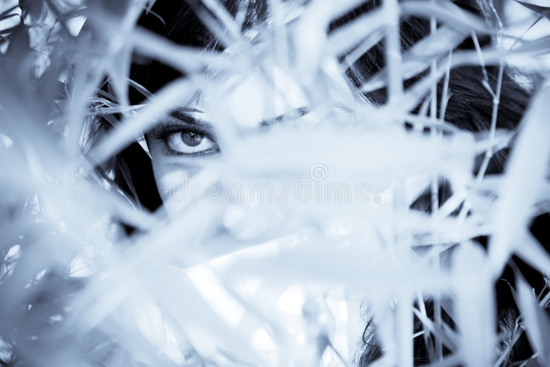 眼睛妇女 免版税图库摄影