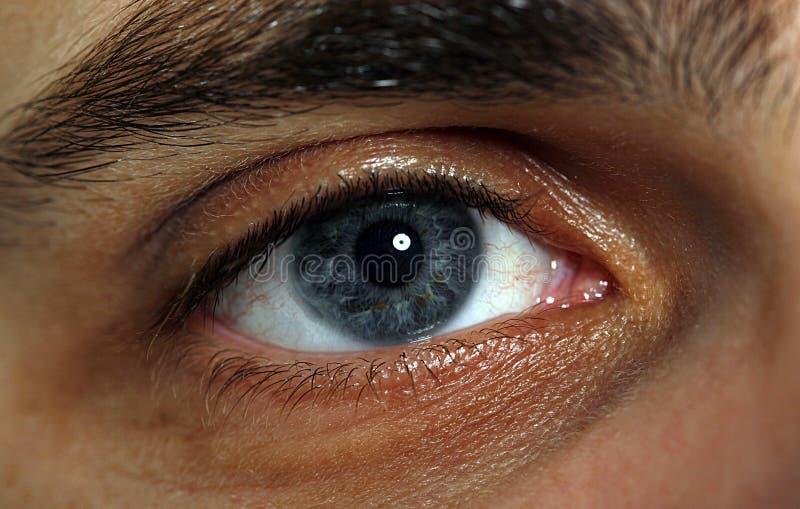 眼睛宏指令 免版税库存照片