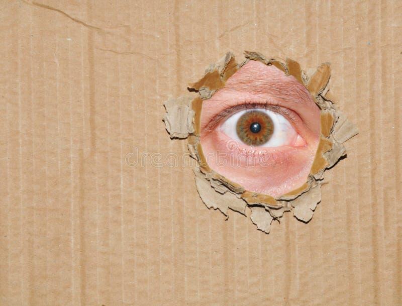 眼睛暗中侦察 免版税库存照片