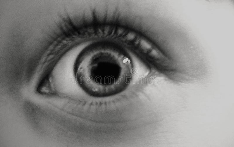 眼睛需要您的时间 库存图片