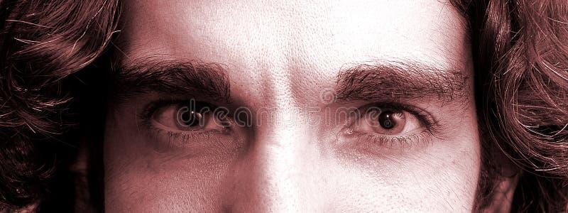 眼睛 免版税库存照片