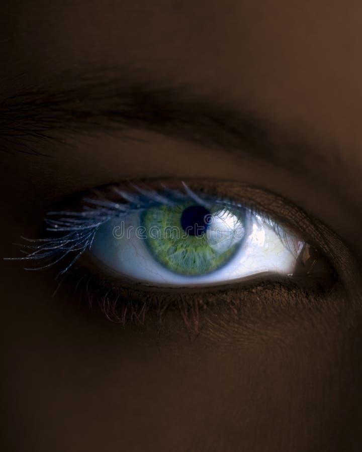 眼睛 免版税库存图片