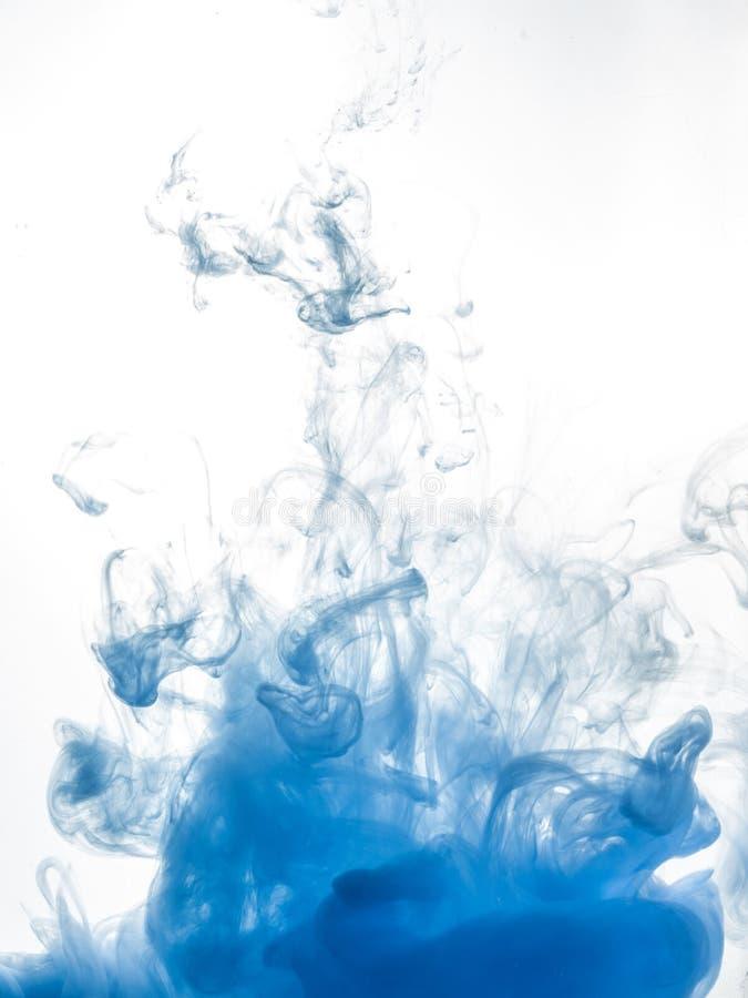 着墨漩涡在白色背景隔绝的水中 油漆在水中 与软的焦点的抽象蓝色背景 虚拟 库存照片