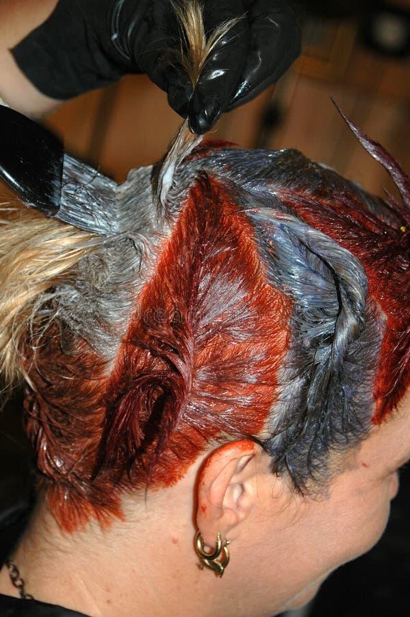 着色头发 免版税图库摄影