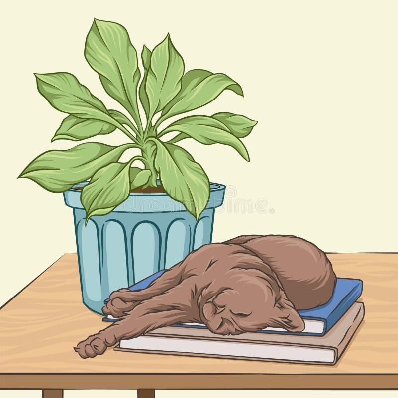 睡觉在一个木桌传染媒介例证的布朗猫 库存例证