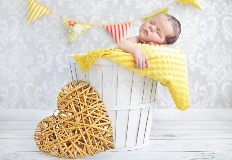 睡觉在一个柳条筐的一个小男孩的画象 免版税库存照片