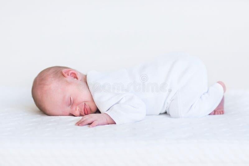 睡觉在白色毯子的小新出生的婴孩 库存图片