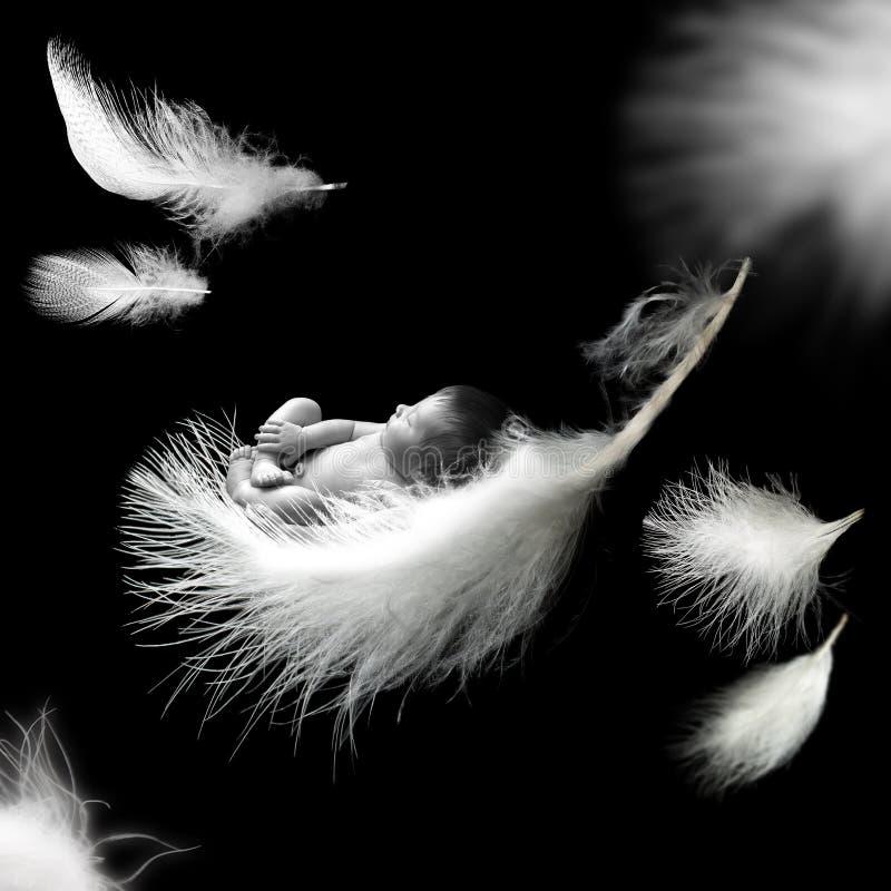 睡觉在羽毛的新出生的婴孩 免版税库存图片