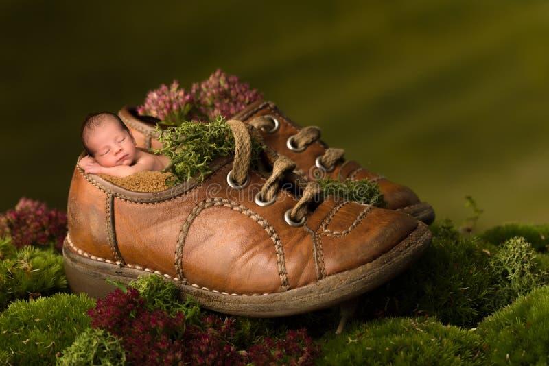 睡觉在老棕色鞋子的新出生的婴孩 免版税库存照片