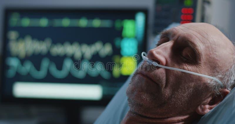 睡觉的患者和心脏监护器 免版税库存图片