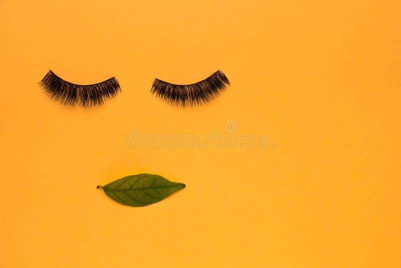 睫毛和叶子平的位置  免版税图库摄影