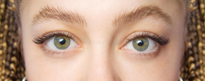 睫毛引伸做法 与长的假睫毛的妇女眼睛 关闭时尚在美容院的眼睛visagein宏观射击  库存照片