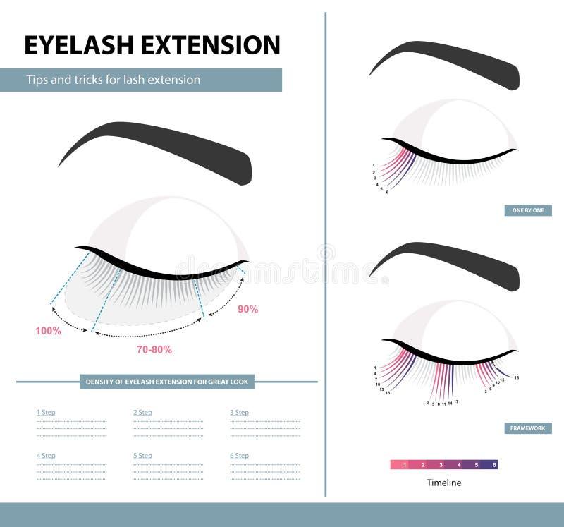 睫毛引伸指南 密度巨大神色的睫毛引伸 技巧和窍门 Infographic传染媒介例证 模板 库存例证