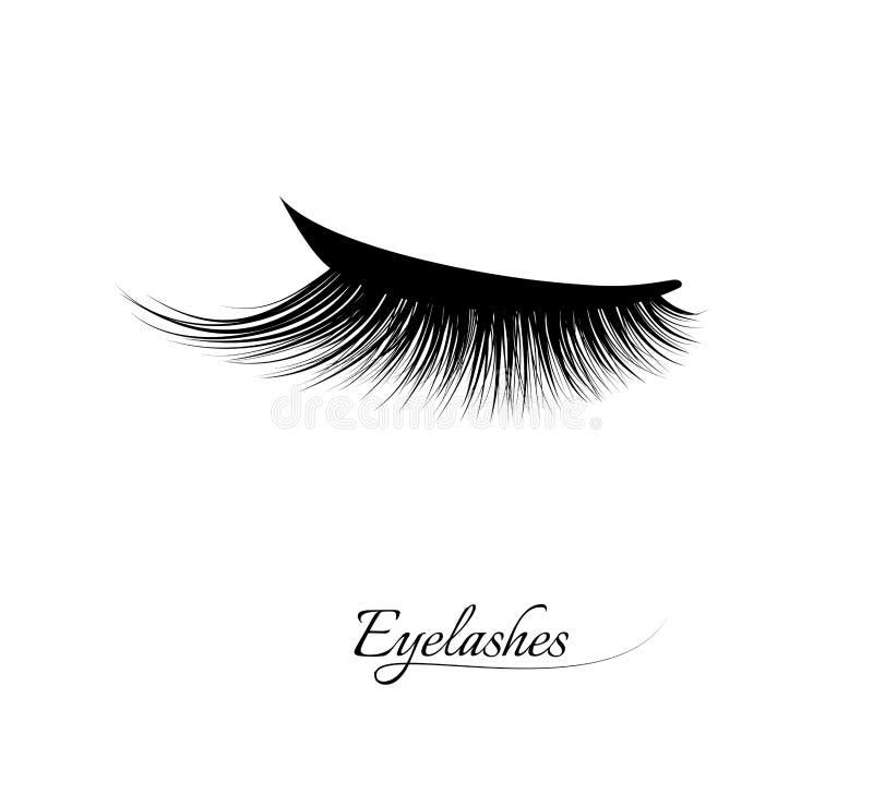 睫毛引伸 美丽的黑长的睫毛 闭合的眼睛 错误秀丽纤毛 染睫毛油自然作用 专业人员 向量例证
