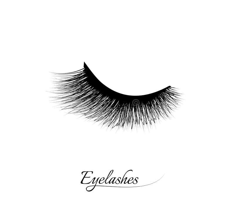 睫毛引伸 美丽的黑长的睫毛 闭合的眼睛 错误秀丽纤毛 染睫毛油自然作用 专业魅力ma 库存例证