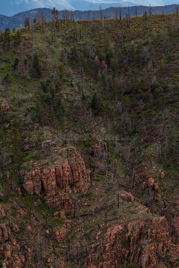 矛高峰山脉科罗拉多斯普林斯 免版税库存图片