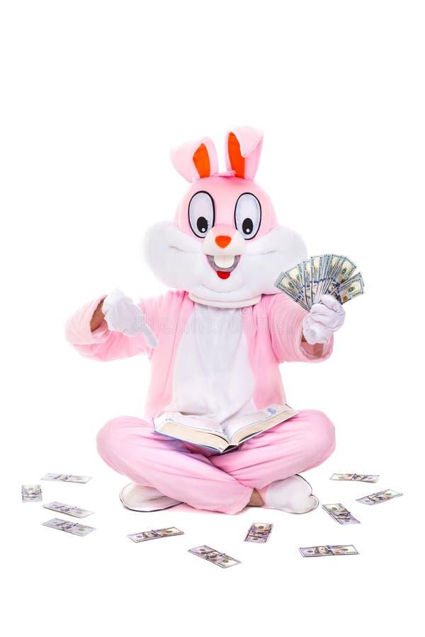 知识是力量 富有的幸运人读书,学会如何挣金钱 与美元爱好者的复活节兔子兔子  免版税库存图片