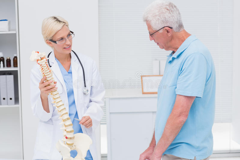 矫形对老人的医生解释的解剖脊椎 图库摄影