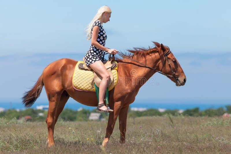 短上衣小点礼服的白肤金发的妇女在马乘坐 免版税库存图片