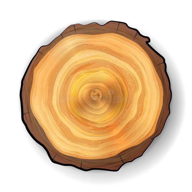短剖面树木树桩传染媒介 可实现轻快优雅的例证 背景查出的白色 库存例证